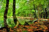 The Fairies' Pond 33