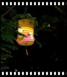 An Abandoned Lantern