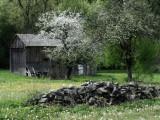 white door - spring