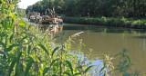 Doolhofwandeling Turnhout