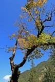 Wanderung ins Gemsteltal - 16.9.2007