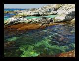 Beavertail Point