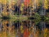 la rive d'automne