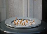 Smoking plantation
