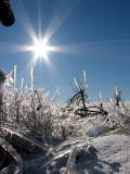 Le téléobjectif  de Leo , le soleil et le champ de glace