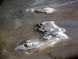 Les iles de glace