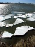 Plaques de glaces devant Québec