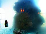 Le poisson et le monstre