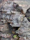 le profil de roc