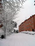 Winter in Hammarbyhöjden
