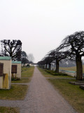 At the cemetary