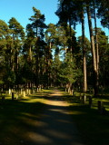 The Forest Cemetary