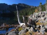Cliff Lake snags