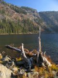 Cliff Lake shore