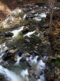 Grider Creek from PCT Bridge