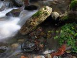 Grider creek shore rock