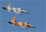 Northrop F-5E Tigers