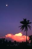 Moon over Sigatoka