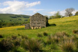 A Barn in Swaledale, Yorkshire Dales