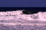 Surfer riding big wave, Sigatoka