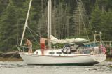 Pipe Dream At Sebasco Harbor