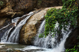 Dui Suthep - Pui National Park,  Chang Mai