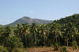 On the way to Ponmudi