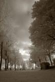 IR Storm Clouds