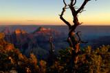 2006 Grand Canyon, Bryce Canyon National Park