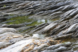 Rocks at Low Tide
