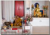 Wat Khao Takiab - a Contemplative Monk