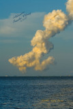 Atlantis  Smoke Cloud nt9783.jpg