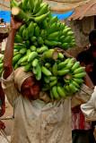 Banana carrier