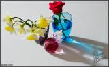 18Apr07 Flowers - 16282