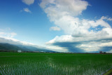 The Beauty of Ilan Plain