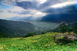 Daylilies Scenery - PFC Photo Travel