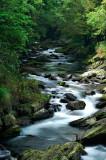 A-Yu Stream & Tong-Hou Stream