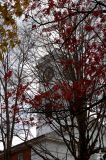 Johnson Chapel--Fall