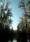 Caddo Sky