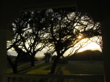 Sunrise From Our Balcony.jpg