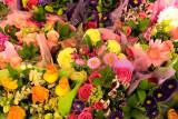 flower-lightroom-3.jpg