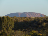 Day 7: Cairns/Uluru (9/3/07)