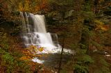 Ricketts Glen Natural Area