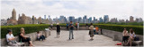 Skyline from the Metropolitan 1
