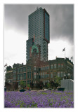 Montevideo and Hotel New York