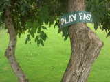 Play Fast
