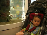 Watching fish in the duty-free shop