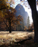 Yosemite Valley Autumn