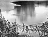 Iced-Lake