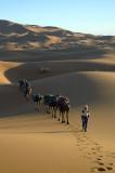 Sahara Expedition